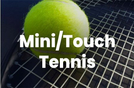 Mini/Touch Tennis